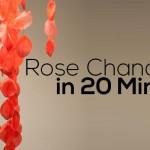 Rose Chandelier in 20 minutes