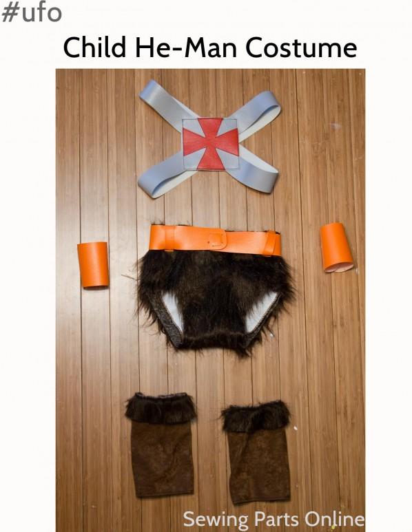 He-man costume 1